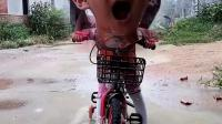 少儿益智:把我的恐龙玩具给我