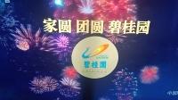 2021年元宵晚会由碧桂园集团独家冠名 15秒广告