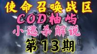 【COD柚屿】使命召唤战区空袭吃鸡第13期