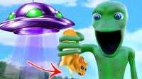仓鼠遇上外星人,它能走出迷宫吗?搞笑的画面诞生了!