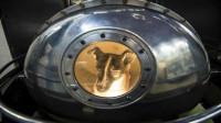 第一个进入太空的其实是狗!至今还在太空漂浮,已有63年之久!