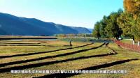 新都桥藏式地毯田园 东谷盆地牦牛谷 川西大环游