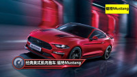 福特Mustang2020款进阶版和特别版哪个比较好?基础款和这两款哪个比较值得?