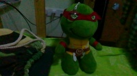 何志宇同学为小乌龟布偶讲读作文的事情