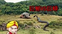 唐唐说电影:巨蜥VS巨蛇 最新怪兽片雷人登场