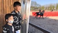 谢楠和儿子看吴京骑马,兄弟俩满脸崇拜夸爸爸好酷,小奶音萌化人