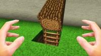 我的世界真人版:小游挖木头,掉到地下洞