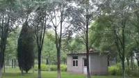 """""""伏""""游三记之北京朝来森林公园"""