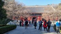 北京秋游--香山公园