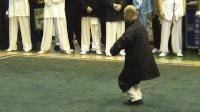 2005年首届中国传统武术节优秀拳种展示 002 男子传统拳