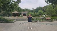 形意八卦剑---刘志平(精平)72岁