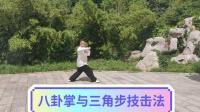 八卦掌与三角步技击法(变式)--刘志平(精平)72岁