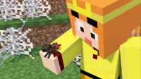 【小龙】我的世界Minecraft 蜘蛛女王爱吃什么?