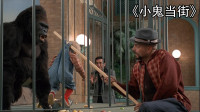 熊孩子满街乱爬,将三个笨贼耍的怀疑人生,看完笑的肚子疼