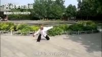 游身八卦连环掌---刘志平(精平)69岁