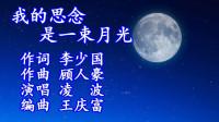 8我的思念是一束月光(演唱)