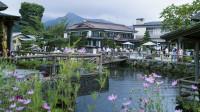 忍野八海 日本名水百选地之一 富士山下的乡村田园