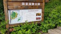 走进长白山碱水河湿地 领略国家公园自然美景