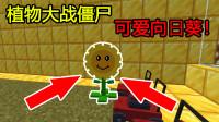 我的世界:植物大战僵尸生存,可爱向日葵~