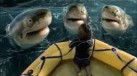 小男孩每天给鲨鱼喂食,却意外遇到了暴风雨,最后鲨鱼救了他