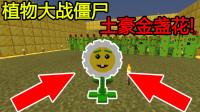 我的世界:植物大战僵尸,土豪金盏花!富可敌国!