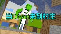 当Dream来到村庄:村民?拿来吧你!
