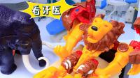 【玩具故事】咖宝车神狮王凯恩牙疼长蛀牙,猛犸莫斯为什么变成猛犸象