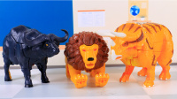【玩具故事】咖宝车神狮王凯恩上课打呼噜,角龙伊顿戳它大喊一声到