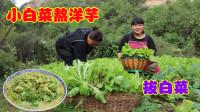 """陕北特色""""小白菜熬洋芋""""的做法,好吃不贵味道香,你吃过吗?"""