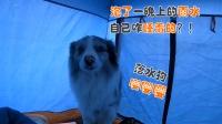 自驾西藏阿里车子报废后帐篷又被大雨淋透,4600公里搭车回家