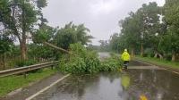 """台风""""圆规""""登陆海南琼海,成近五年来登陆海南最强台风"""