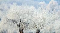 多地迎气温新低,25地已供暖!你家热了吗?