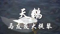 《天鹅》蒹葭原创视频作品