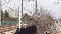 萧甬铁路K656次 绍兴柯桥区柯桥特大桥东侧引桥拍车 萧甬线