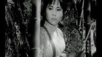 闪光的箭(1980年)