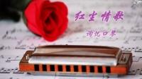 口琴曲 红尘情歌 简谱字幕 询忧口琴