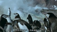 BBC 蓝色星球(全十集) 04冰封大海[英语]