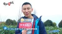 重庆一线旅游摄影大咖齐聚定心茶园找春天