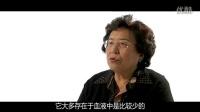 #妈妈做错了# 张思莱:微量元素到底该不该查