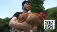 《逗比实验室》:在鸡头装摄像机 拍出的画面超稳定?
