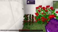 我的世界解谜猛砖-01 《玩蛋解密》-01逗逼的作者 minecraft 我的世界实况解说 当个创世神