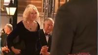 <007:天幕坠落>伦敦首映 查尔斯王储亲临助阵