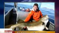 垂钓者捕获47公斤鳕鱼破世界纪录