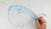 飞童亿佳创意绘画 01海洋动物蓝鲸