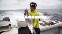 飞澳两万里第一季  第三集悉尼鱼市场.mpg