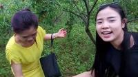 TSH视频田 织金洞大峡谷桃园风趣16音乐 难诉相思