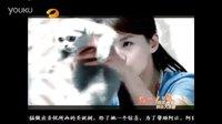 许飞《我要的飞翔》—湖南卫视版《一起来看流星雨》片尾曲
