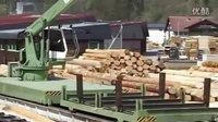 强悍的全自动木材加工流水线