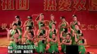 舞蹈:叶儿青青菜花黄