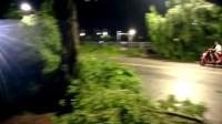 我的拼接视频_201708260139新兴县风灾后实录